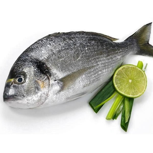 Seabream - www.readingqualityfish.co.u