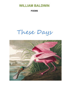 These Days ~ Poems by William Baldwin