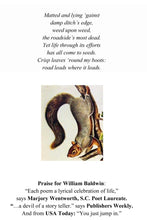Load image into Gallery viewer, These Days ~ Poems by William Baldwin
