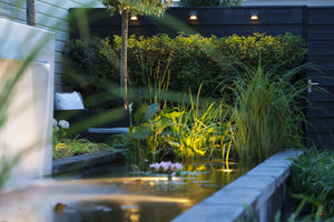 10 Benefits of 12-Volt Outdoor Lighting