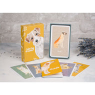 Brain Games for Dogs Card Deck