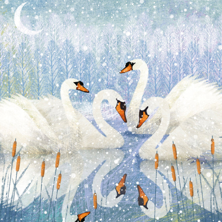 Museums and Galleries Christmas Classics Range - Moonlit Swans
