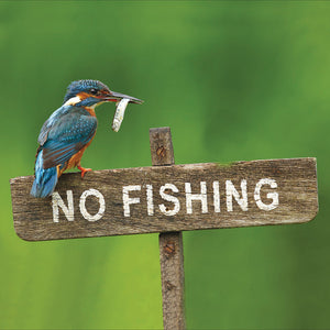 No fishing - The Alresford Gift Shop