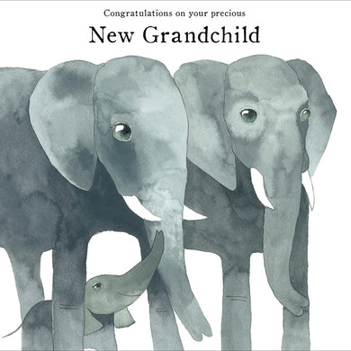 Your precious new grandchild - The Alresford Gift Shop