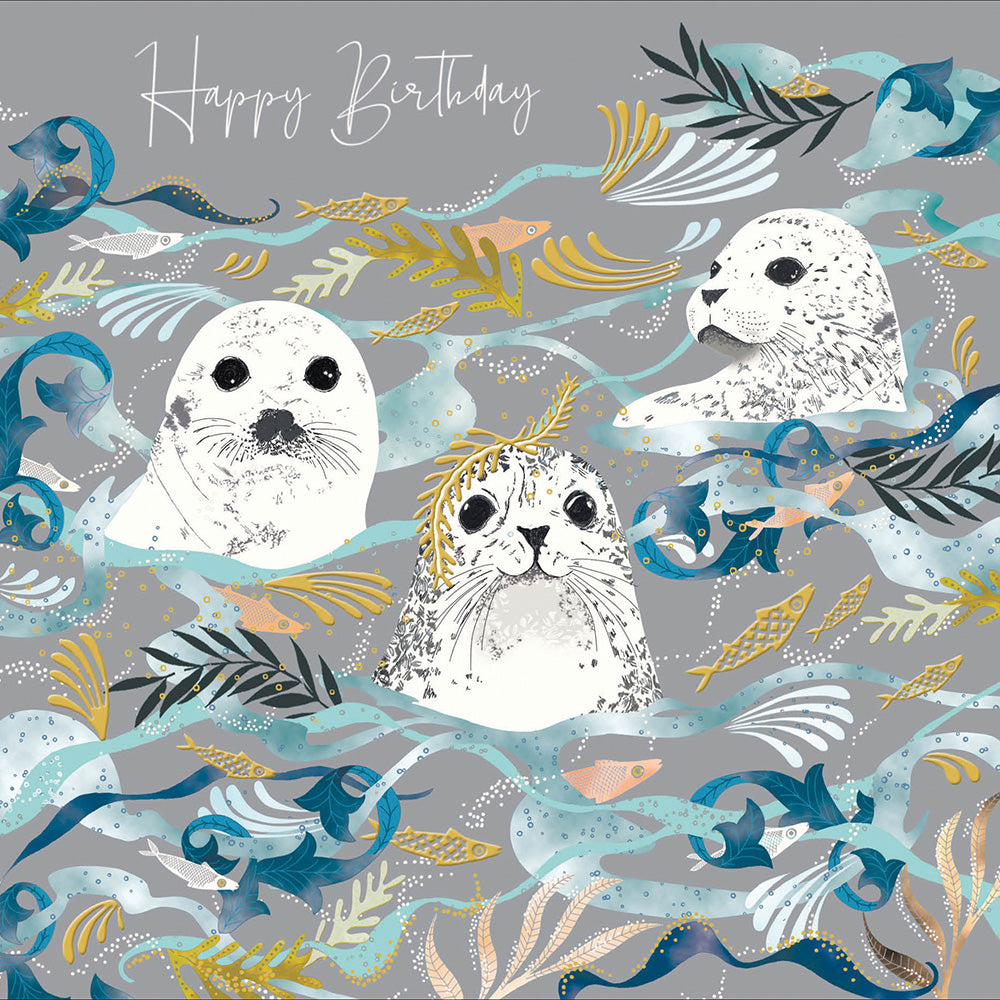 Happy Birthday - Seal Sanctuary ( National Trust)