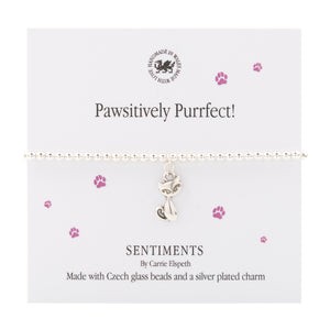 Sentiment bracelet Pawsitively Purrfect! - The Alresford Gift Shop