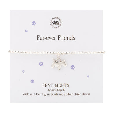 Sentiment bracelet Fur-ever Friends - The Alresford Gift Shop