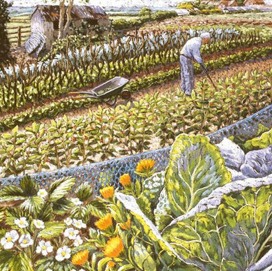 Blooming Vegetables by Cath Read ( pastel on paper) - The Alresford Gift Shop