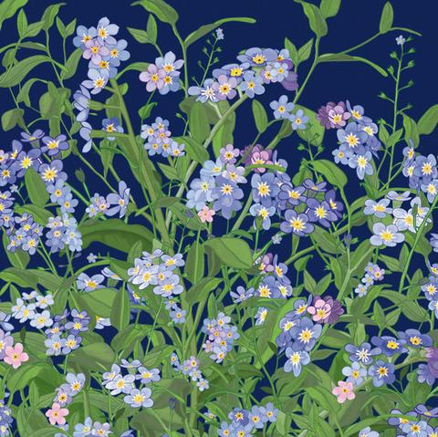 Forget-me-nots by Mig Wyeth - The Alresford Gift Shop