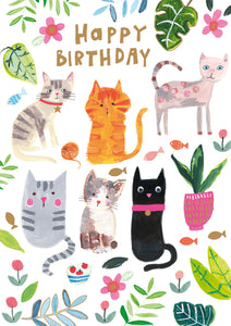 Happy birthday cats - The Alresford Gift Shop
