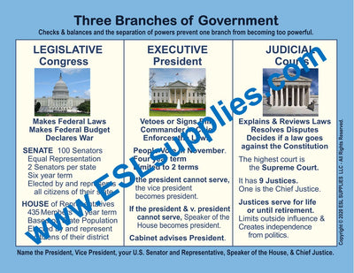 Branches of Government Citizenship Poster