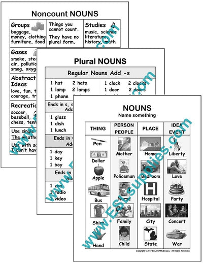 Set of 3 Noun ESL Poster Downloads