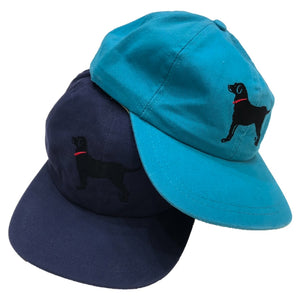 "Martha's Vineyard ""BLACK DOG BRAND"" Cap"