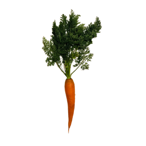 Classic Orange Baby Carrot
