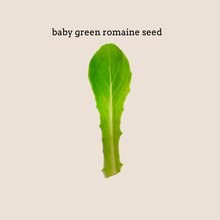 Load image into Gallery viewer, Local Farmer's Lettuce Mix Seed