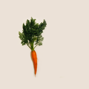 Classic Orange Baby Carrot Seed