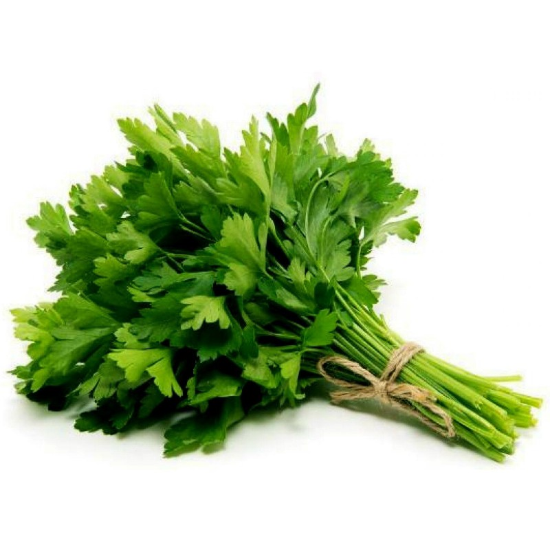 Parsley Herb Seed (Italian Giant)