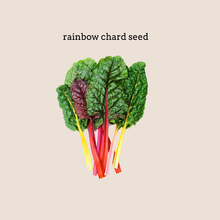 Load image into Gallery viewer, Rainbow Chard Seed