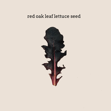 Load image into Gallery viewer, Red Oak Leaf Lettuce Seed