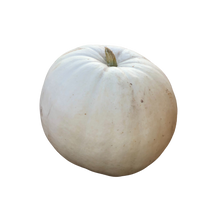 Load image into Gallery viewer, Snow White Pumpkin