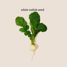 Load image into Gallery viewer, White Radish