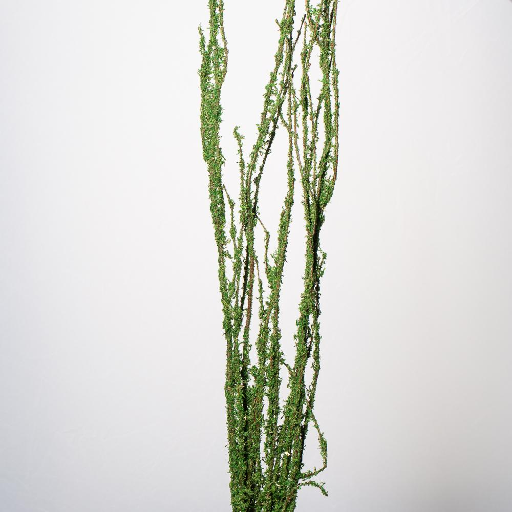 "Moss Covered 48""-52"" Coastal Range Natural Branches Bundle of 3"