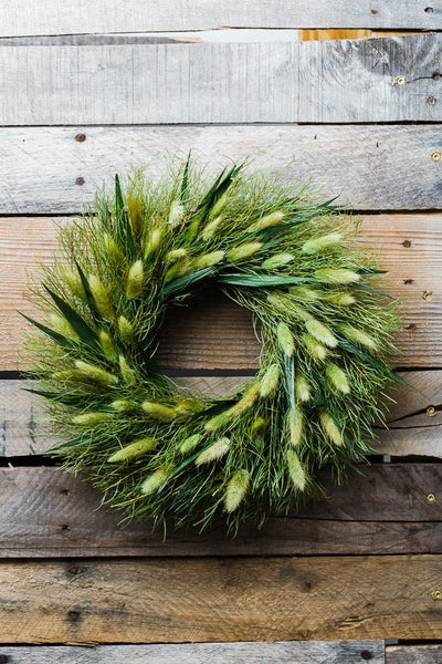 "Richland Preserved Willow Wreath 14"" Set of 6"
