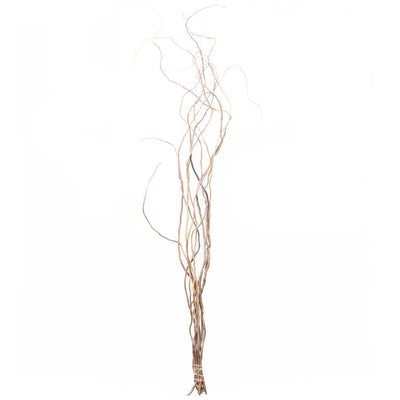 natural curly willow tree branches 26 30in