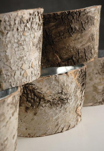 natural birch bark zinc pot planter 6x3