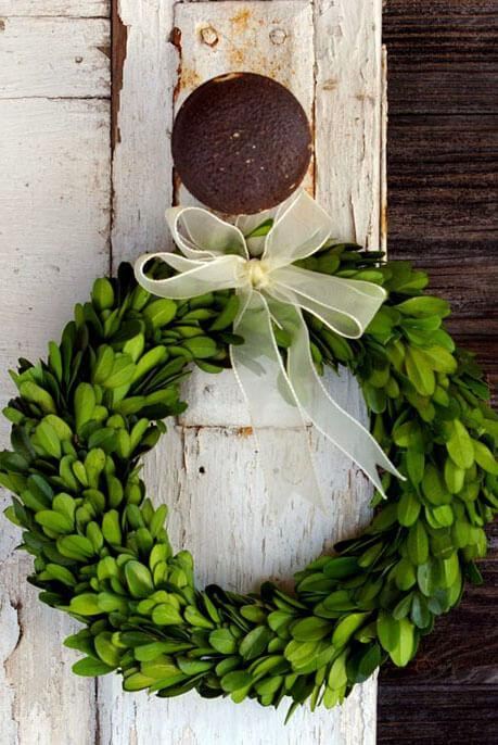 "8"" Preserved Round Boxwood Wreath with Ribbon"