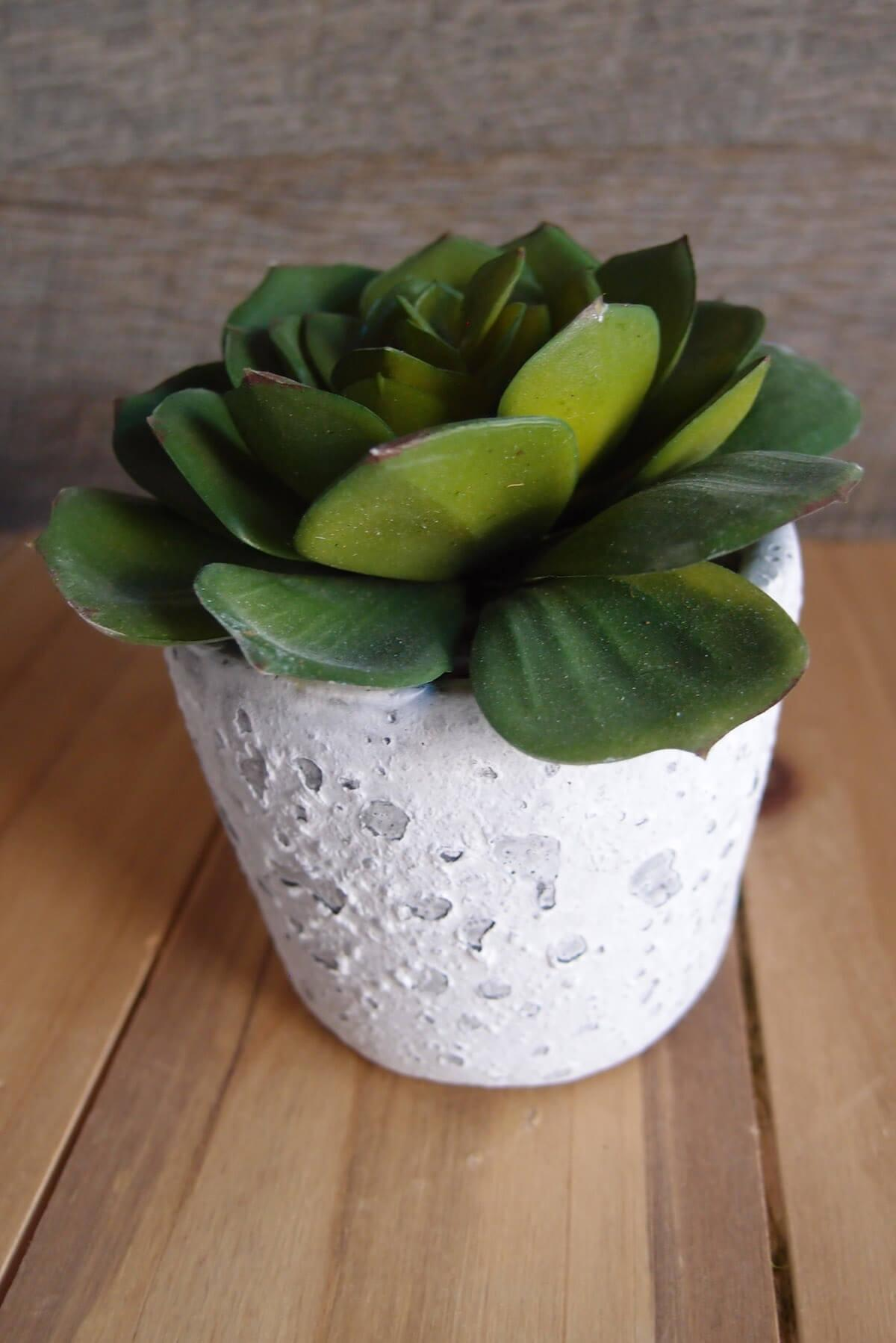 "Faux Echeveria in Pot 3"" Green"