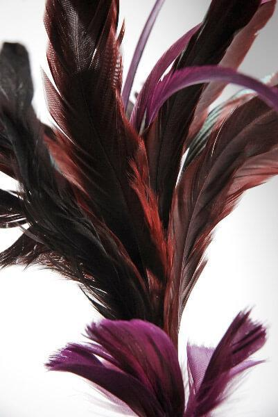 fashion feather 30 burgundy wired