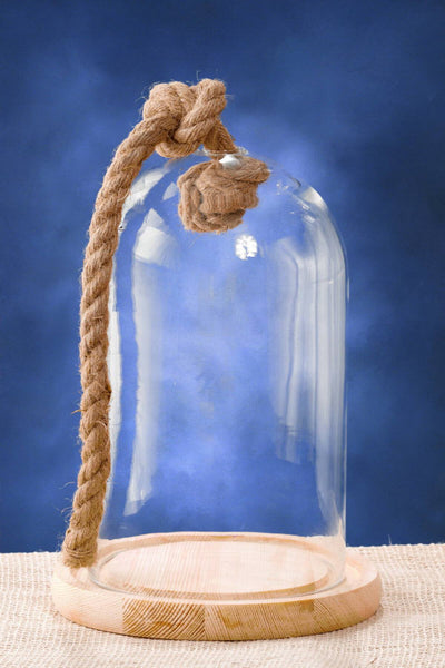 Nautical Glass Bell Jar 9.25 in