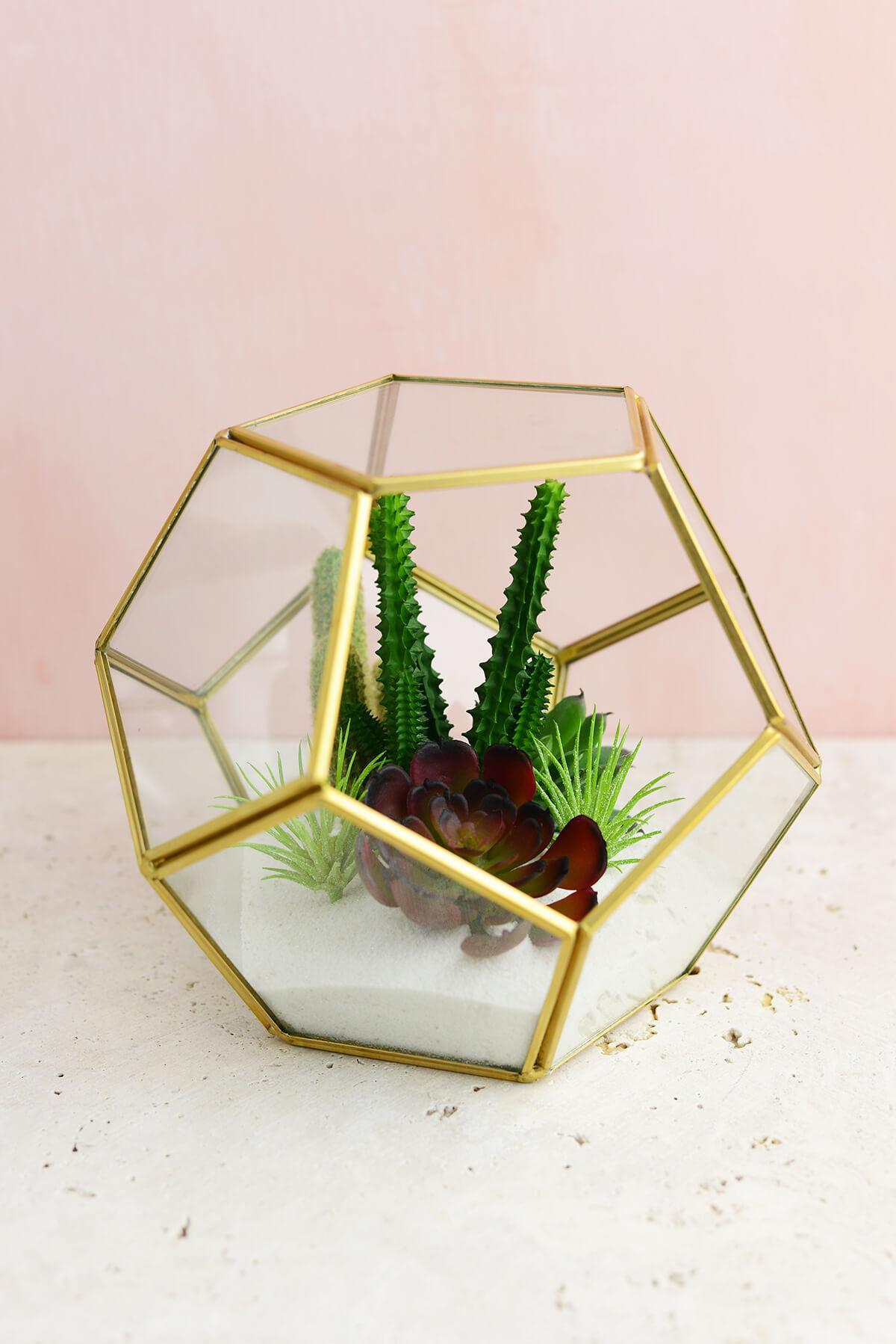 Hira Glass & Brass Terrarium Display Box