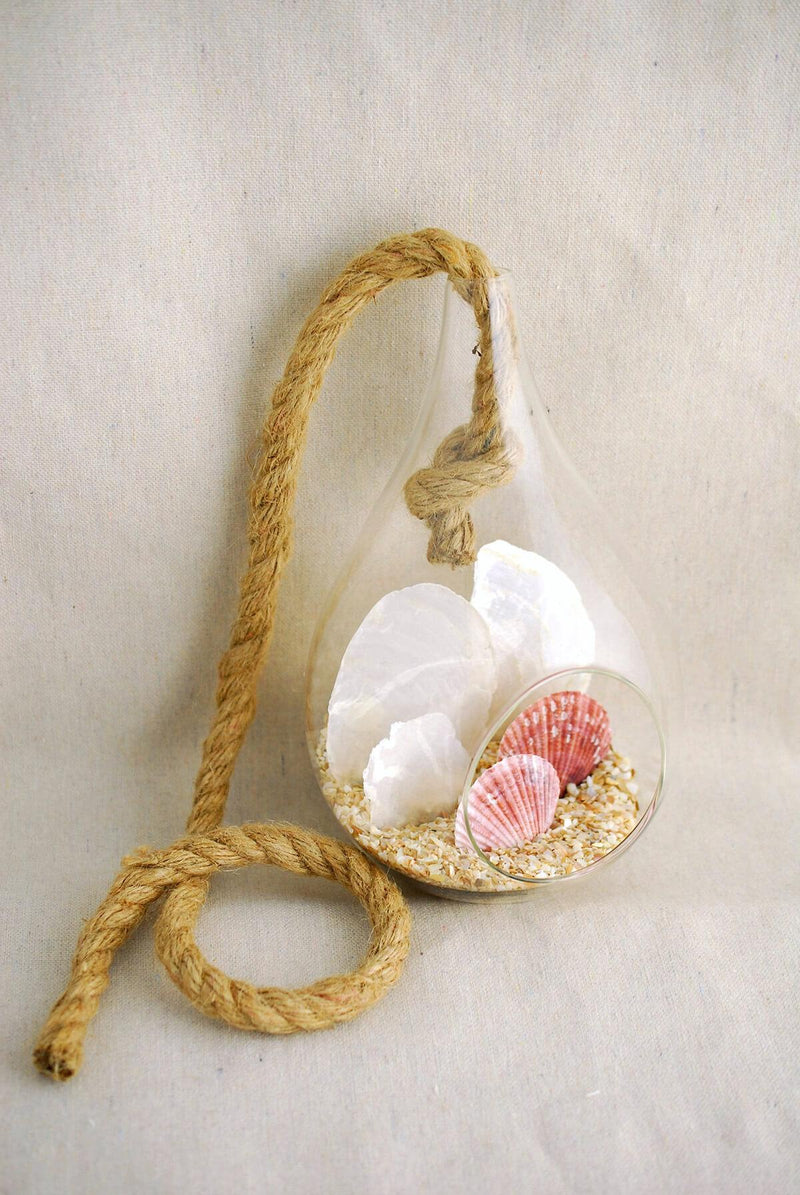 Hanging Glass Terrarium 9in