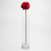 richland red poppy 26 24