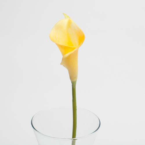 "Richland Yellow Calla Lily 14"" Set of 12"
