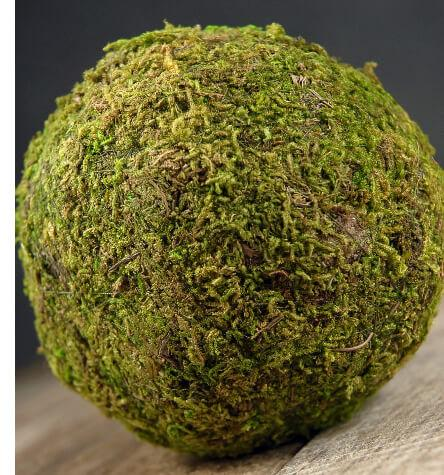 Preserved Moss Balls 4in