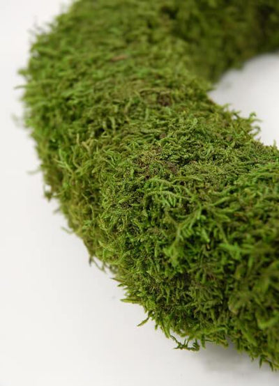 preserved moss 12 wreath