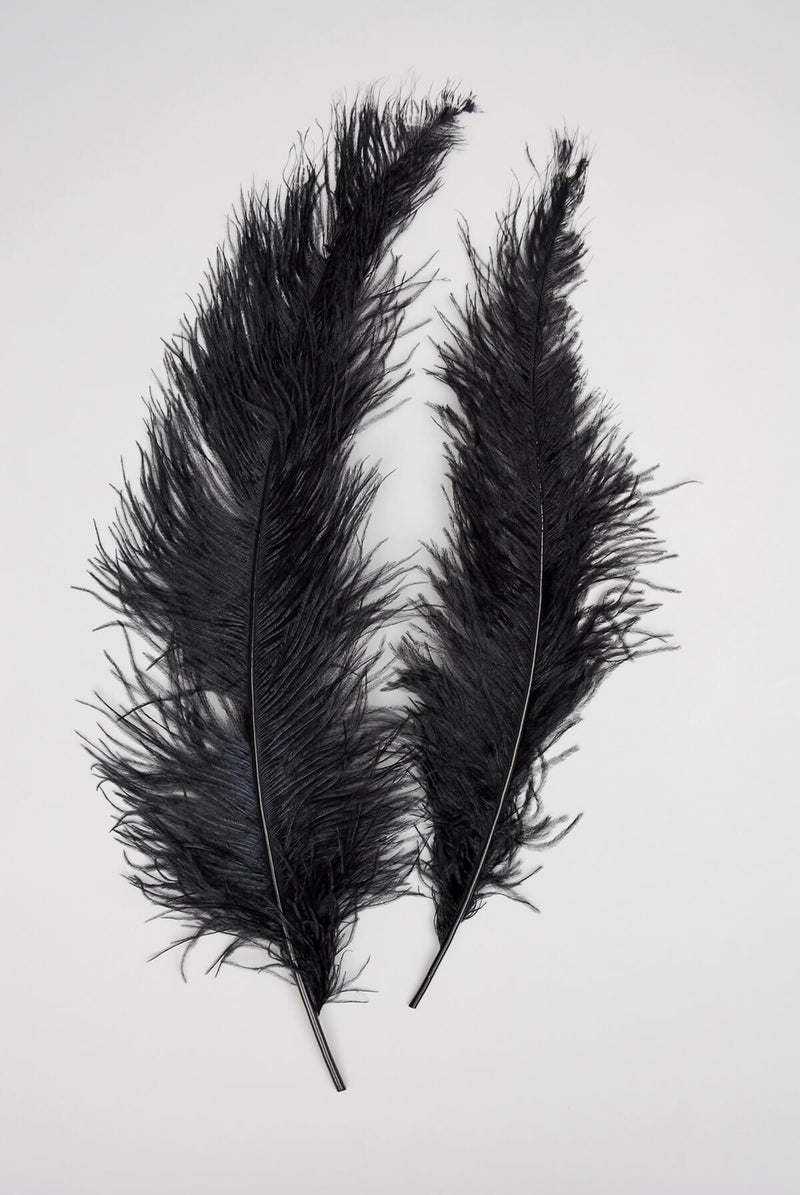 "1/4 LB. Black 20""  Ostrich Feathers Spads"