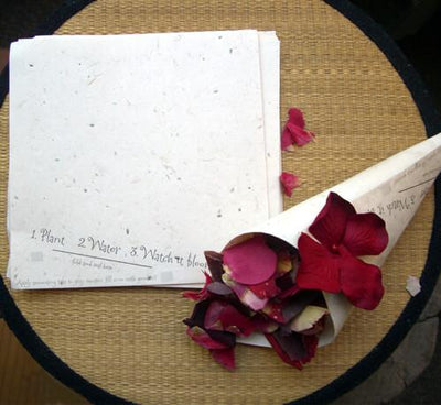 Seeded Paper for Paper Cones, Plantable Wildflowers