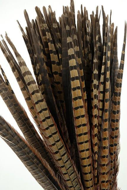 pheasant feathers 18in pack of 100