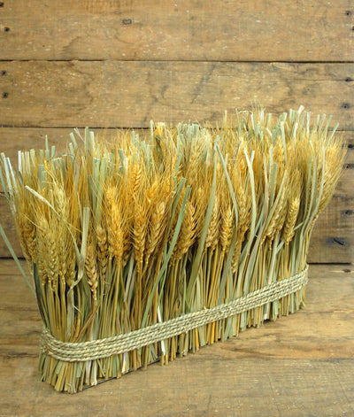 "Natural Preserved Wheat Bundle 10""x 15"""