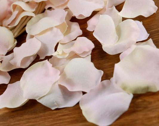 silk rose petals pale pink