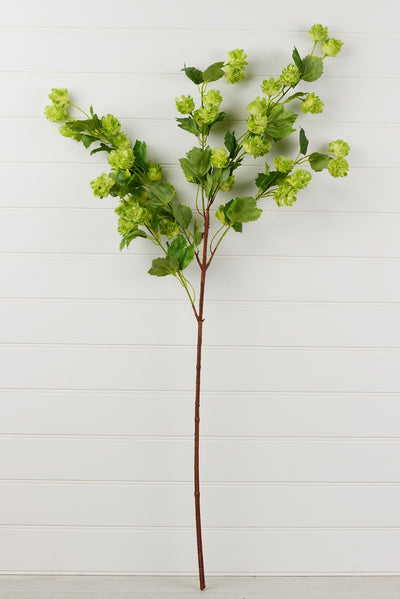 Blooming Hops Spray 39""