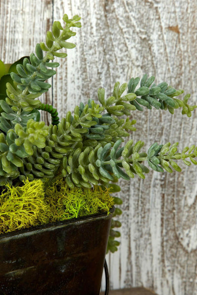 succulent spray donkey tail 11in