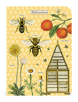 Bees & Honey Set of Mini Notebooks