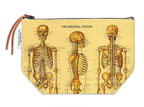 Skeletal System Zippered Pouch