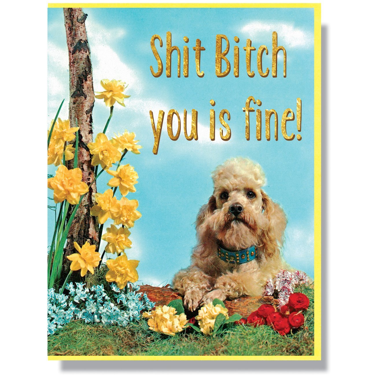 """Shit Bitch, You Is Fine"" Note Card"