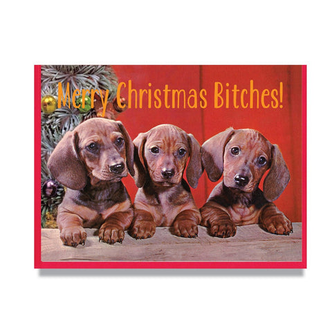 "Smitten Kitten: ""Merry Christmas Bitches"" Boxed Holiday Cards"